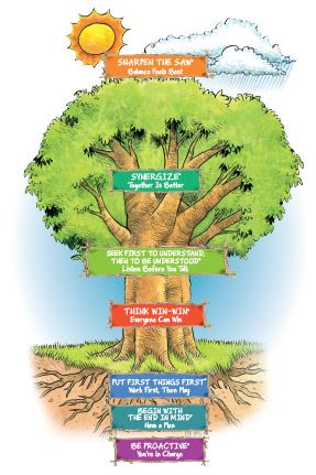 The Leader in Me 7 Habits Tree